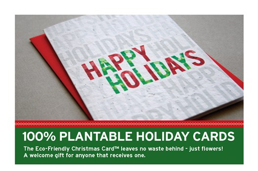 Plantable Holiday Cards